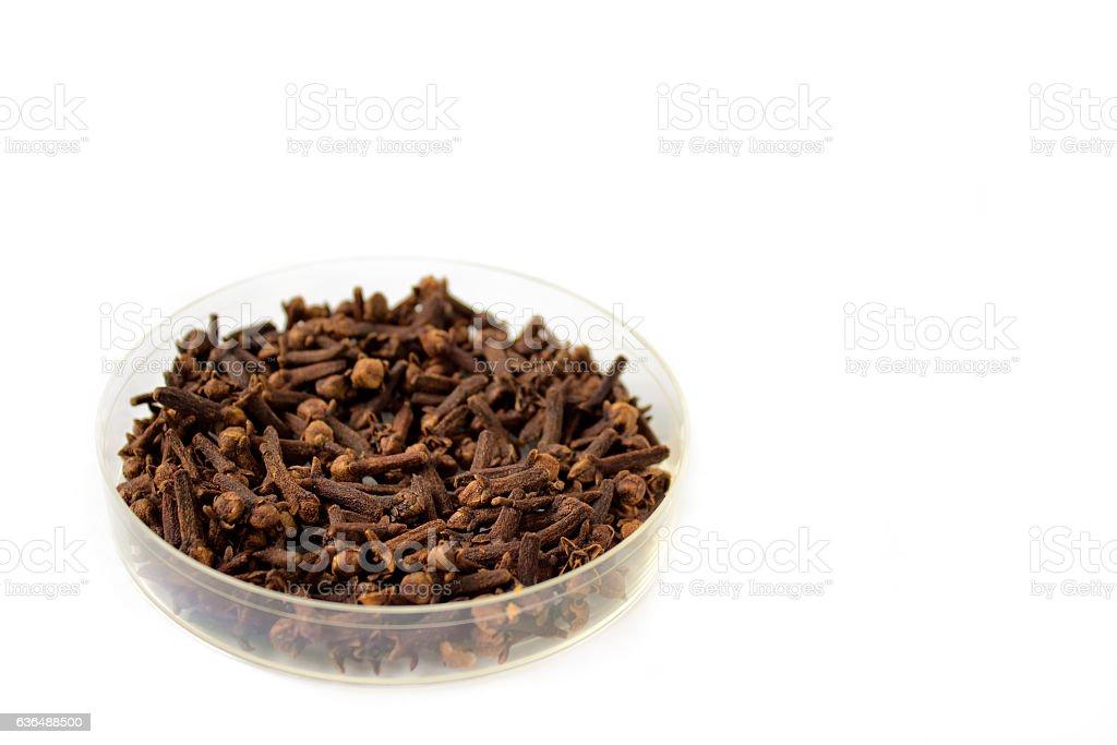 Dried clove stock photo