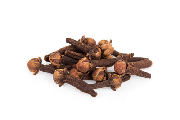 dried cloves isolated on white background – zdjęcie