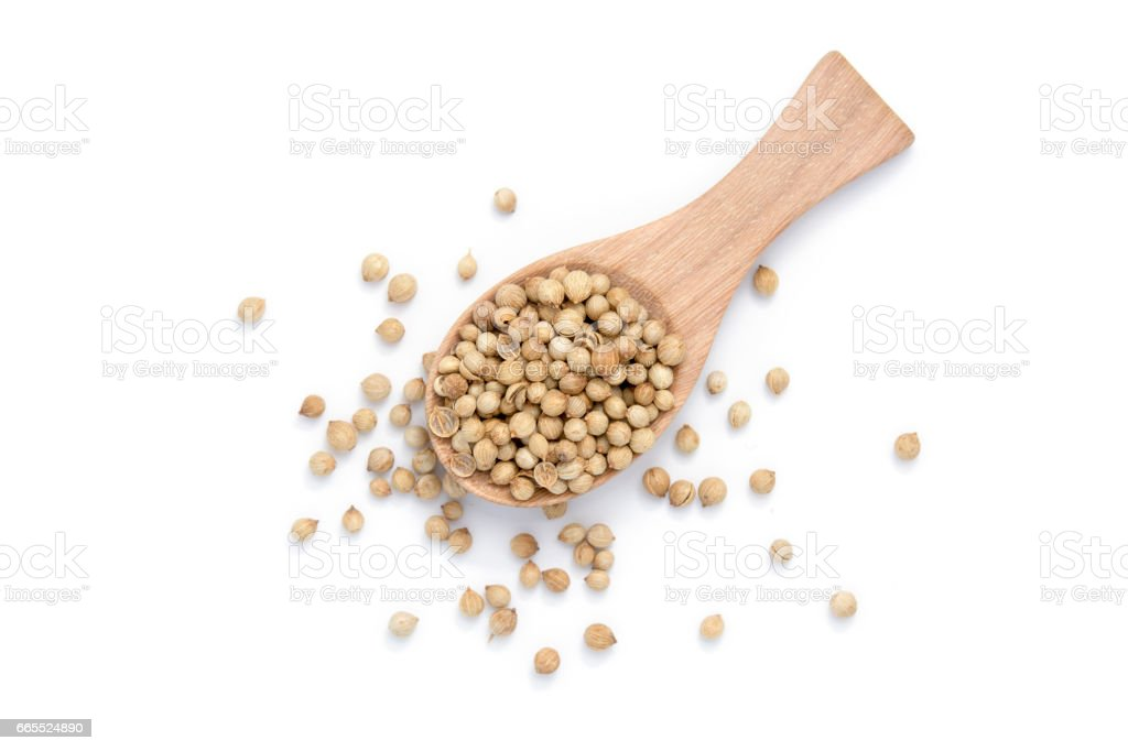 Dried coriander seeds on wooden spoon over white background stock photo
