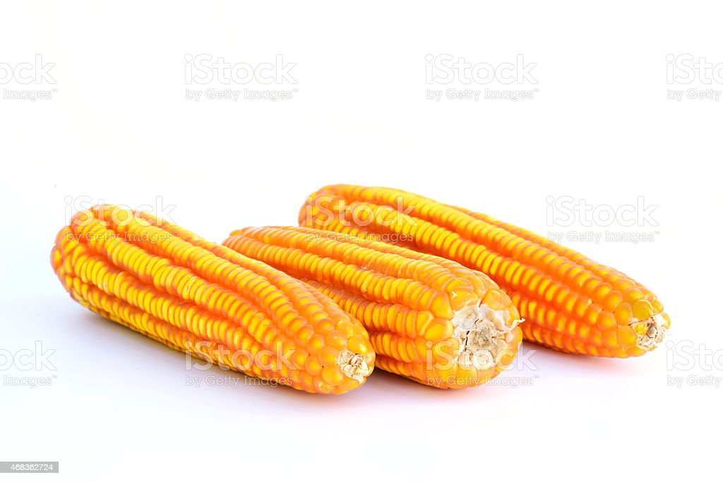 Dried corn closeup on a white. royalty-free stock photo