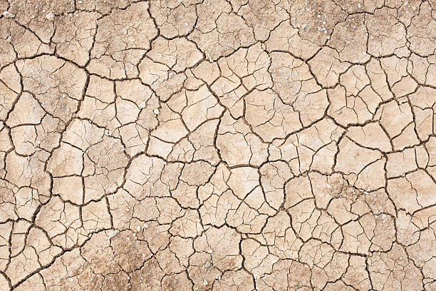 Dried cracked dirt Dirt without dirt lake bed stock pictures, royalty-free photos & images