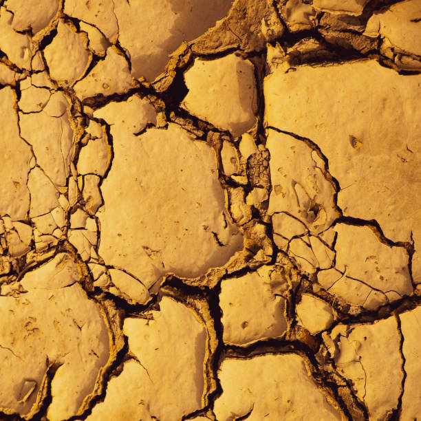 Dried cracked mud suitable as background and climate change symbol stock photo