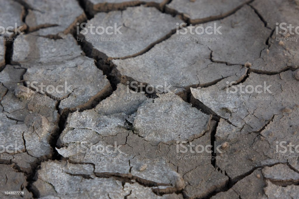 dry earth with cracks, close up