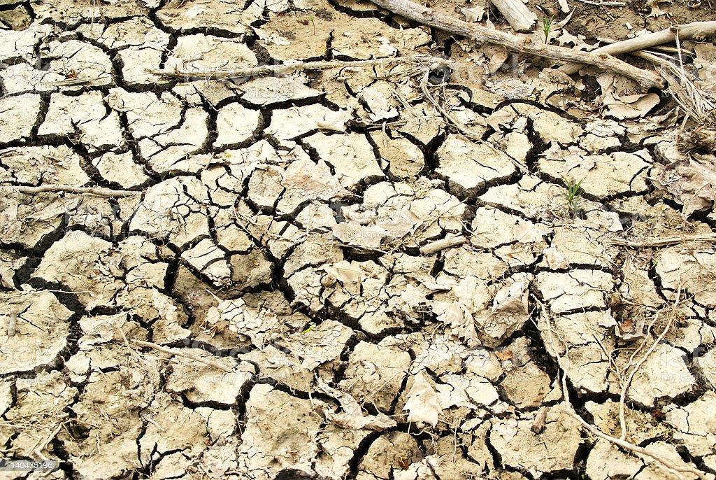 photo of dried farm land