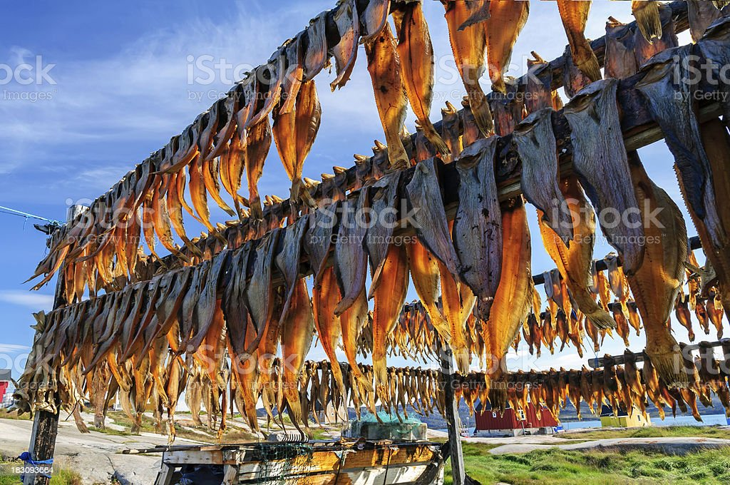 Dried fish in Rodebay settlement - Greenland stock photo