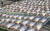 Dried fish on the grid under sunlight