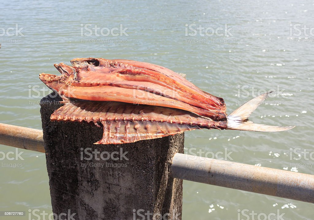Сушеные рыбы поместить в штатив поднос на солнце дня свет Стоковые фото Стоковая фотография