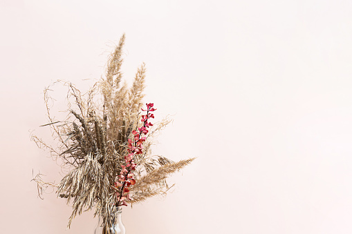 Dried flowers. Field dry spikelets and herbs in vases on a light pink background. Autumn still life