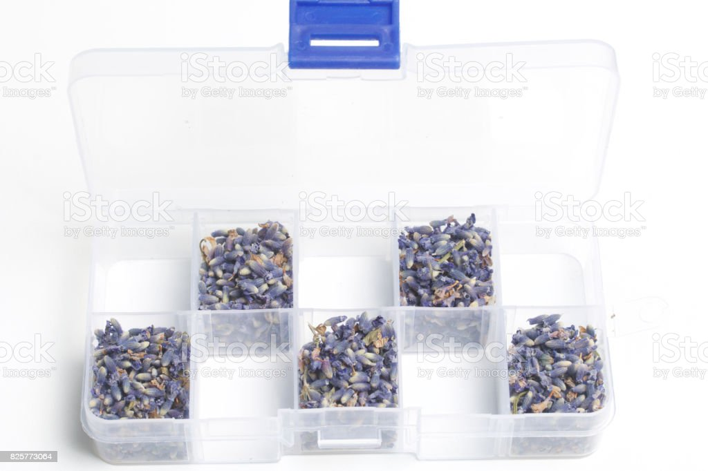 Dried flowers of lavender. The cells of the container are filled with dried lavender inflorescences in staggered order. On a white background. stock photo