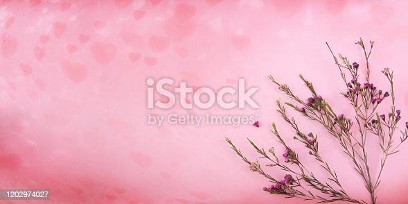 Dried flowers on pink heart background. Flat lay photography. Romantic floral background for a mothers day concept. Top view with space for design and text.