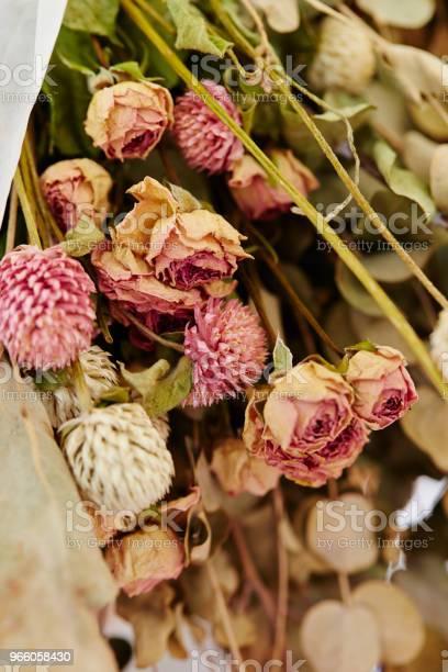 Torkade Blommor-foton och fler bilder på Blomkorg - Blomdel
