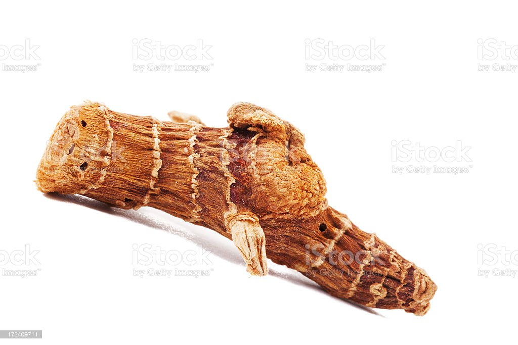 Dried galangal root royalty-free stock photo