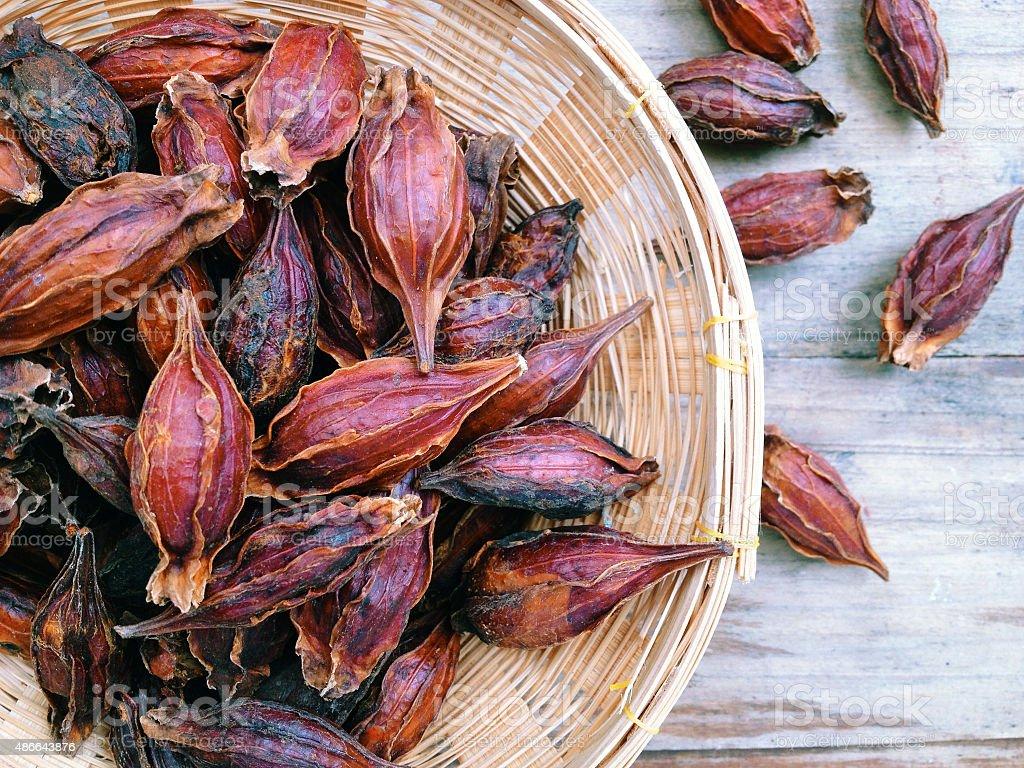 Dried Gardenia Fruit stock photo