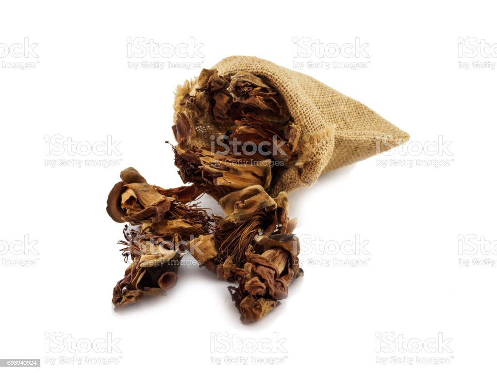 Dried herbal (cotton tree flower) of isolated stock photo