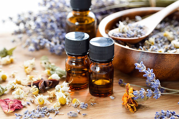 dried herbs and essential oils stock photo