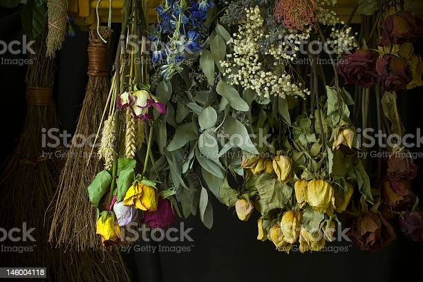 Dried herbs and flowers picture id146004118?b=1&k=6&m=146004118&s=612x612&h=gige6xoopqqnwgauxpsnenuwmh6fmcxribi6mbwu5e0=