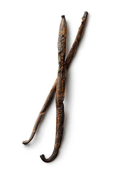 Dried Herbs and Spices: Vanilla More Photos like this here... plant pod stock pictures, royalty-free photos & images
