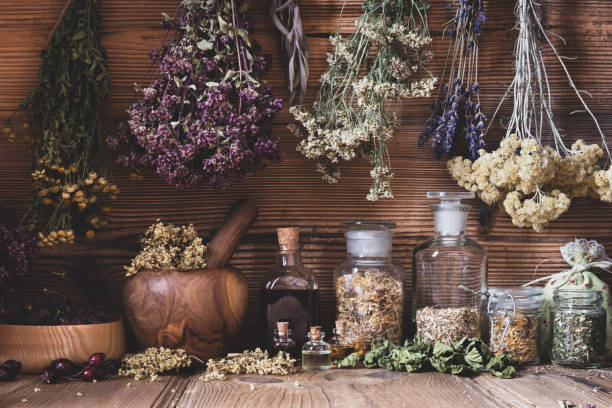 Dried herbs hanging over bottles of tinctures and oils Dried herbs hanging over bottles of tinctures and oils herbal medicine stock pictures, royalty-free photos & images