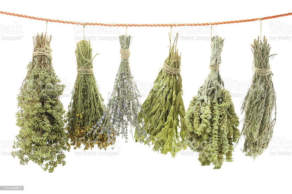 Dried herbs stock photo
