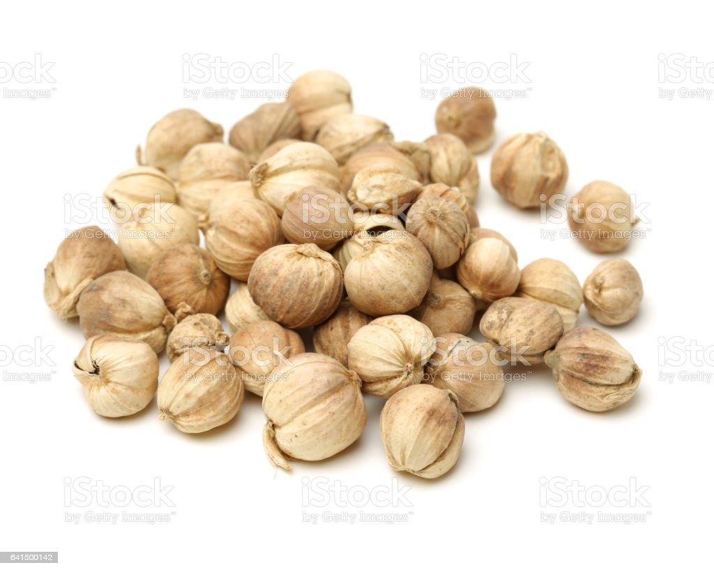 Dried Herbs,Amomum krervanh Pierre,Siam Cardamom, Best Cardamom, stock photo