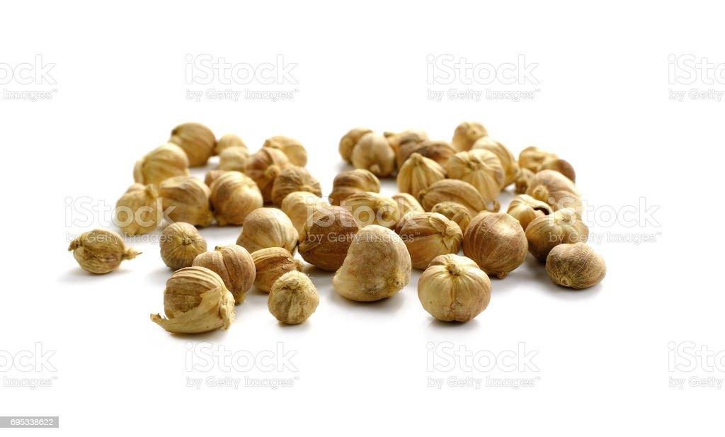 Dried Herbs,Amomum krervanh Pierre,Siam Cardamom, Cardamom, Clustered Cardamom, Camphor Seed,Zingiberaceae stock photo