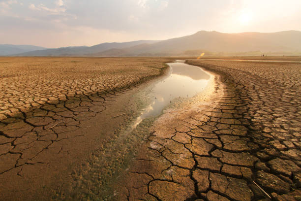 Dried lake and river on summer and Climate change concept. Dried lake and river on summer, Water crisis at africa or ethiopia and Climate change or drought concept. dry stock pictures, royalty-free photos & images
