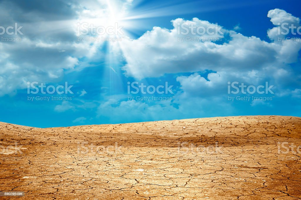 dried landscape royaltyfri bildbanksbilder