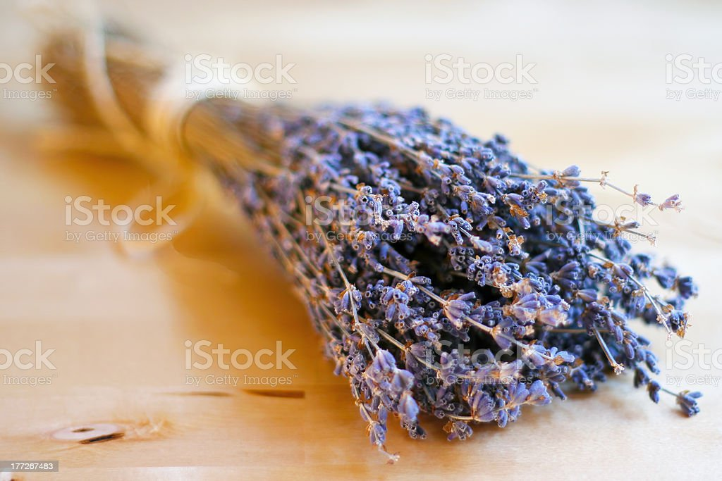 Dried lavender bouquet royalty-free stock photo