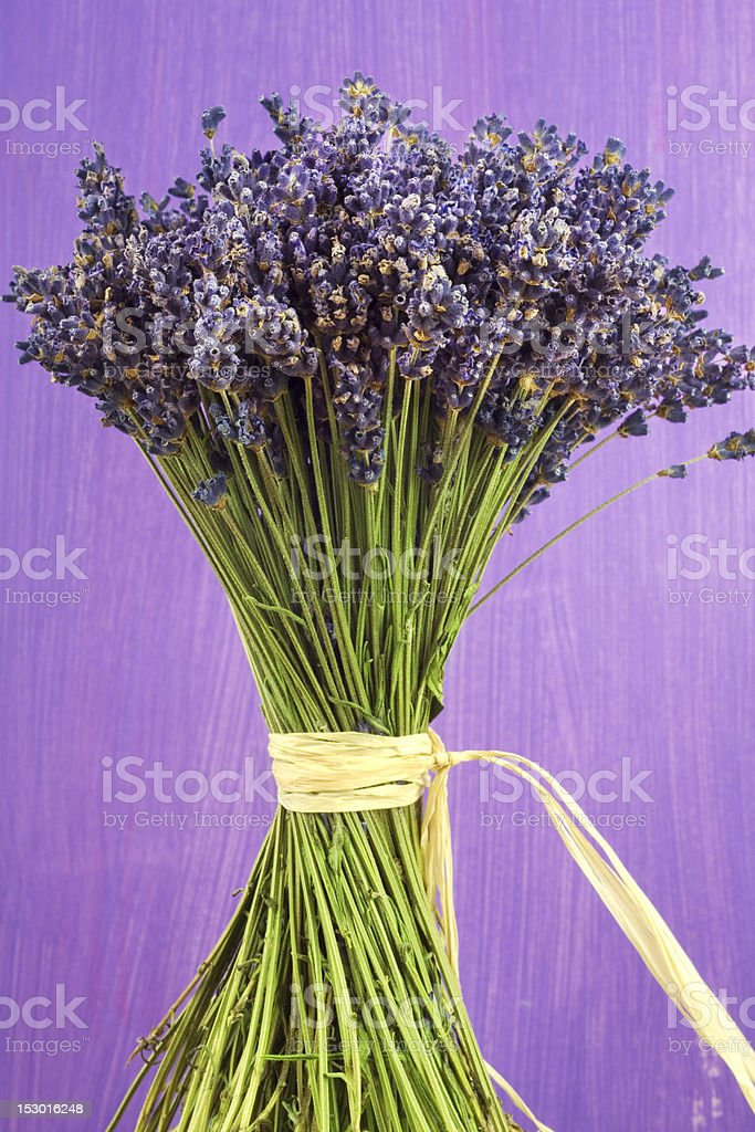 Getrockneten Lavendel Lizenzfreies stock-foto