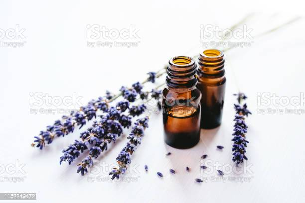 Dried lavender with a bottle of essential oil picture id1152249472?b=1&k=6&m=1152249472&s=612x612&h=hdonjpt6 p7nlrtocbhoiwx4 nqfwf7wuxhloae dka=