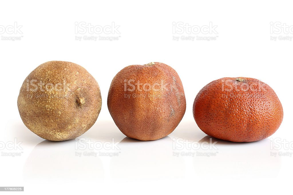 Dried lemon, orange and tangerine royalty-free stock photo