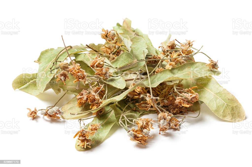Dried Linden Flower on White stock photo