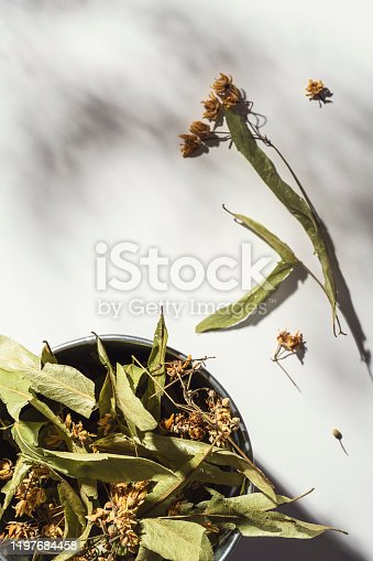 Dried linden leaves and flowers on white background. Dried herbs shot from directly above.