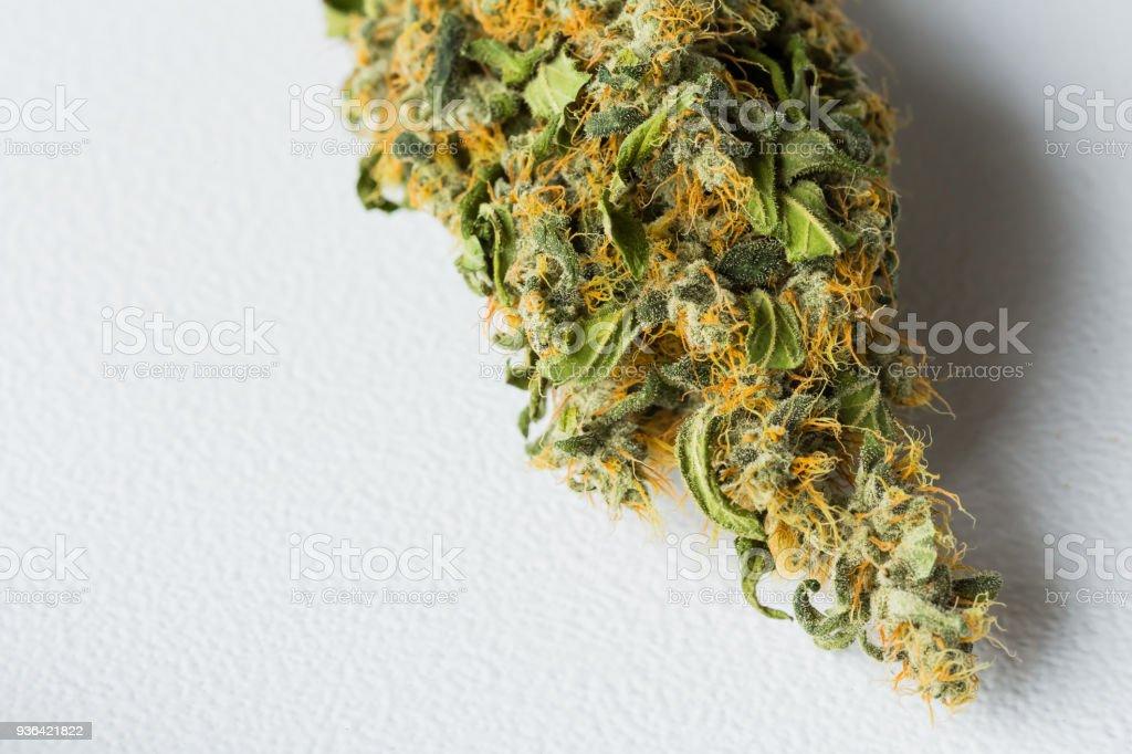 Dried Medical Marijuana Cannabis on a white background stock photo