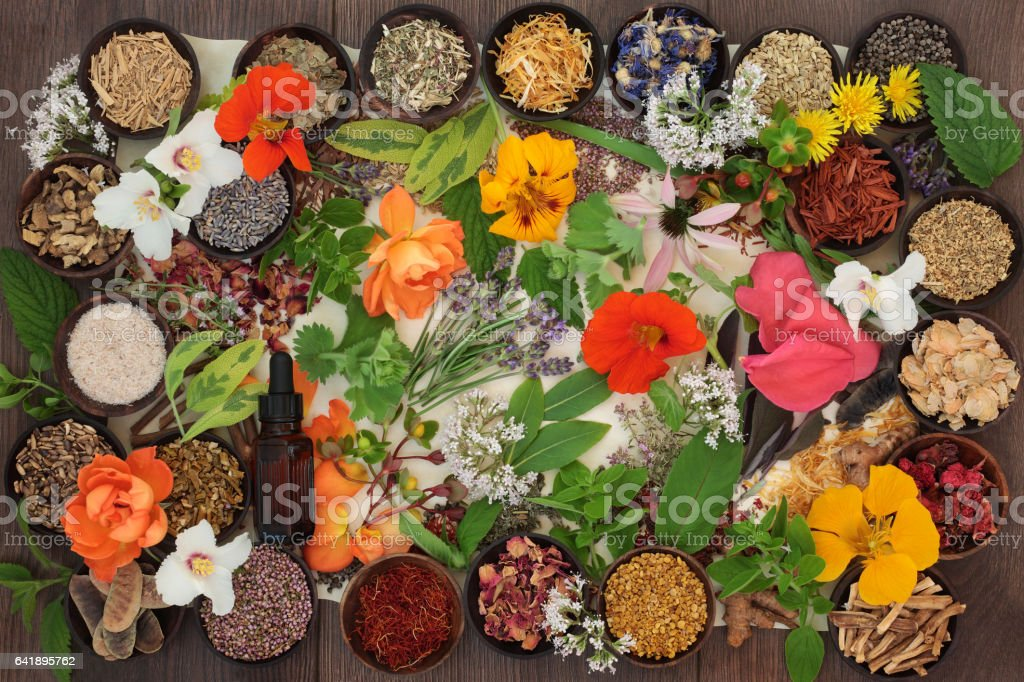 Dried Medicinal Flowers and Herbs stock photo
