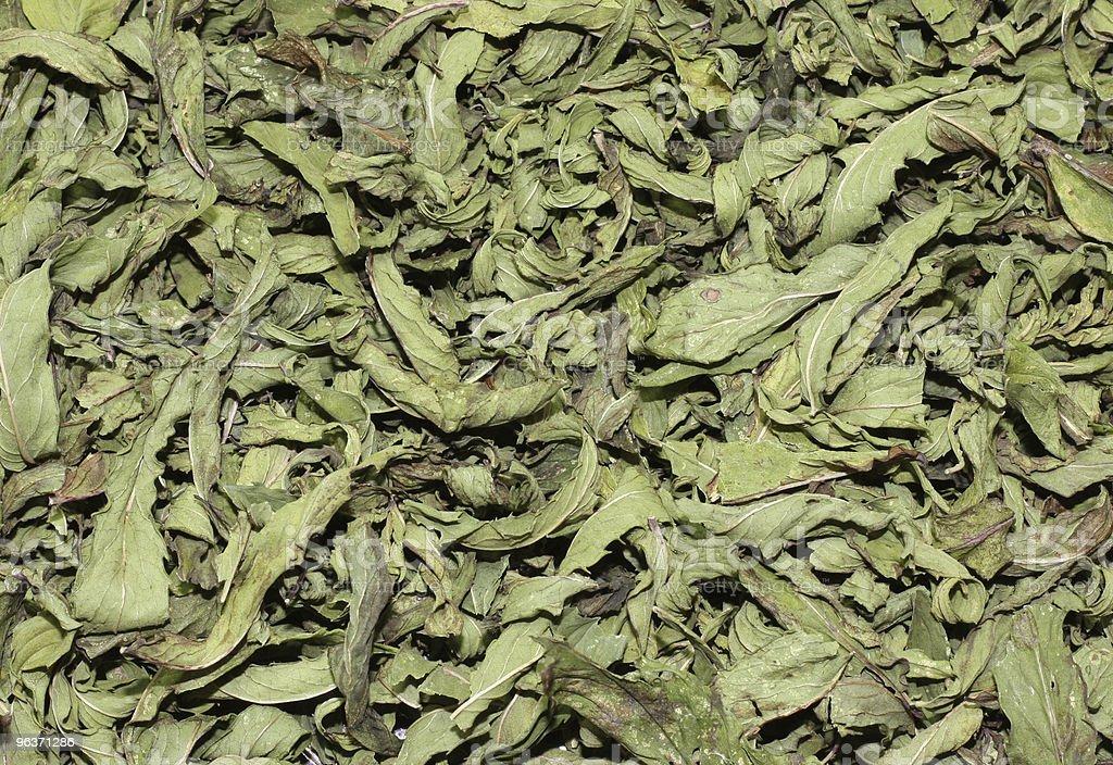Dried Mint stock photo