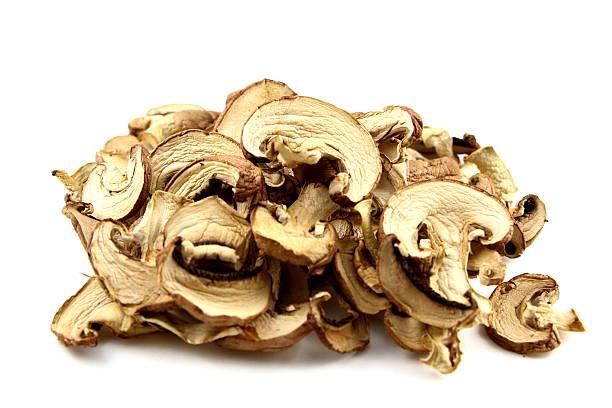 Cogumelos secos isolado - foto de acervo
