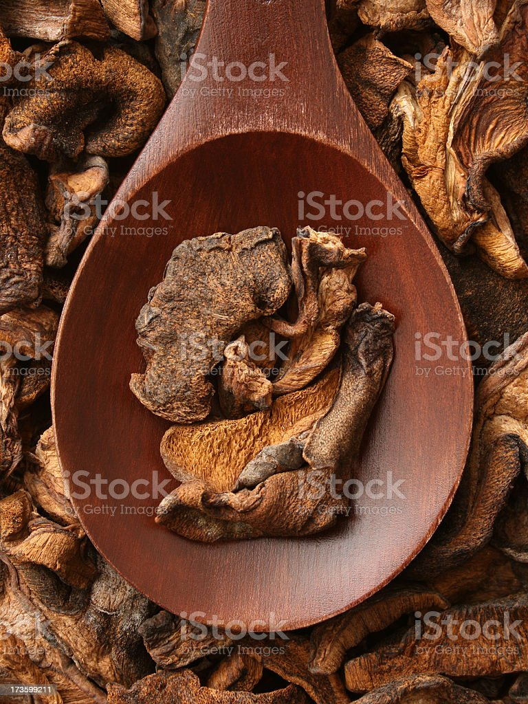 Dried mushrooms royalty-free stock photo