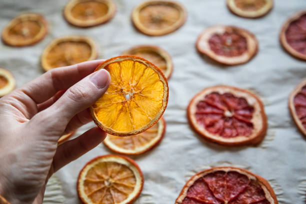dried oranges in a hand for diy projects and zero waste Christmas decorations stock photo