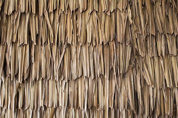 getrocknete palm struktur - strohdach stock-fotos und bilder