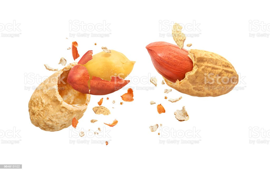Dried peanuts, broken into two parts, isolated on a white background stock photo