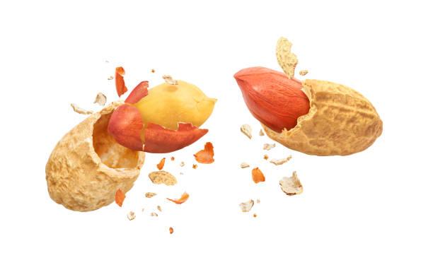 Getrocknete Erdnüsse, in zwei Teile zerbrochen, isoliert auf weißem Hintergrund – Foto