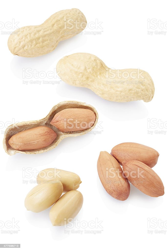 Dried peanuts collection royalty-free stock photo
