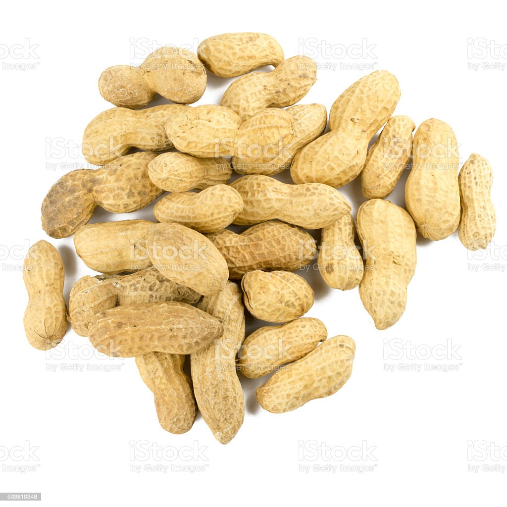 Dried peanuts in isolated on white stock photo