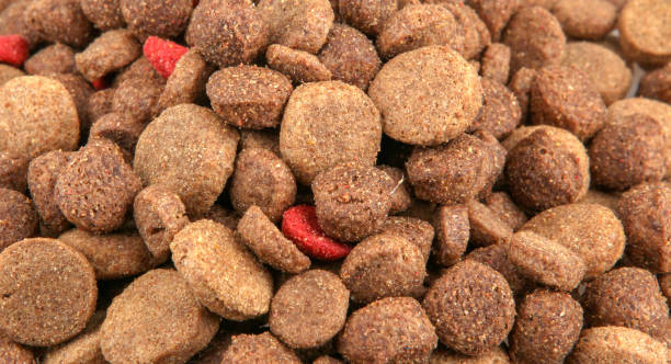 Dried pet food picture id1055656194?b=1&k=6&m=1055656194&s=612x612&w=0&h= usqz7zrwosohfbofdbdfxf2t7y6rz3mm 1cyf9todo=