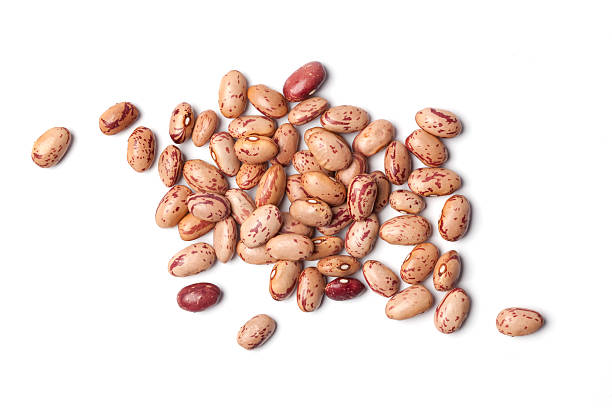 dried pinto beans in a pile on a white background - 豆類 個照片及圖片檔