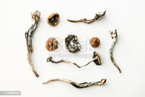 dried psychedelic magic mushrooms