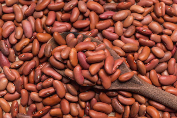 Dried red beans on a rustic wooden spoon stock photo