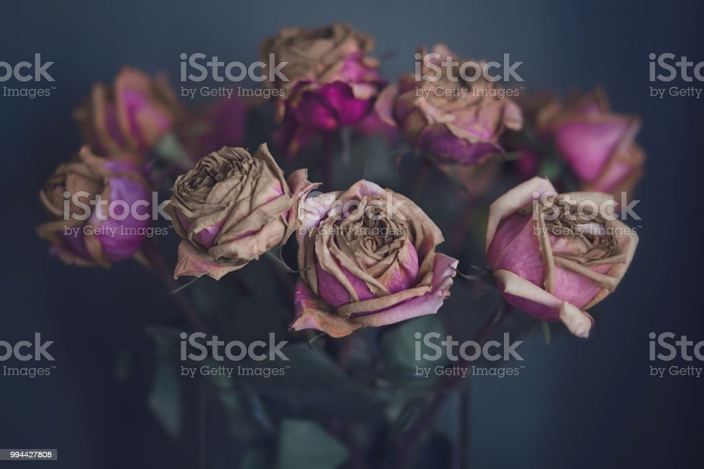 Dried Rose Bouquet In A Glass Vase Inside A Home In Front Of A Green