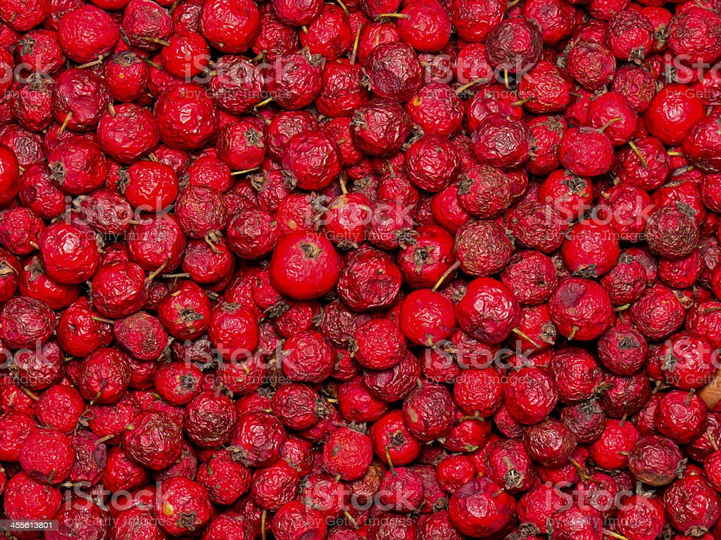 Dried rosehips. stock photo